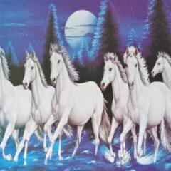 ऑफिस में 7 घोड़े की तस्वीर