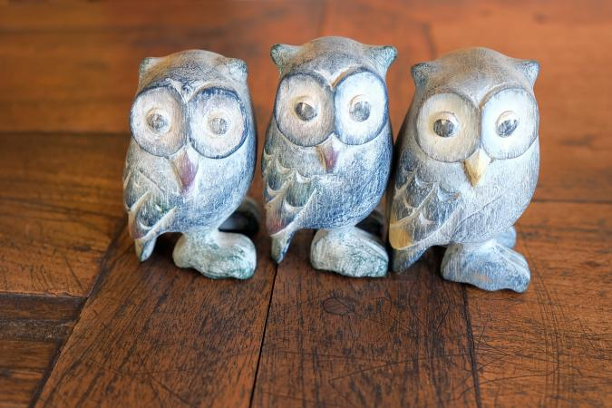 keeping owl statue at home | Owl Statue Vastu