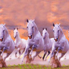 सात घोड़ों की तस्वीर
